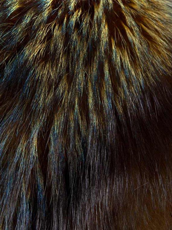 Accessorio volpe argentata ocra blu oltremare collo | Nicola Pelliccerie